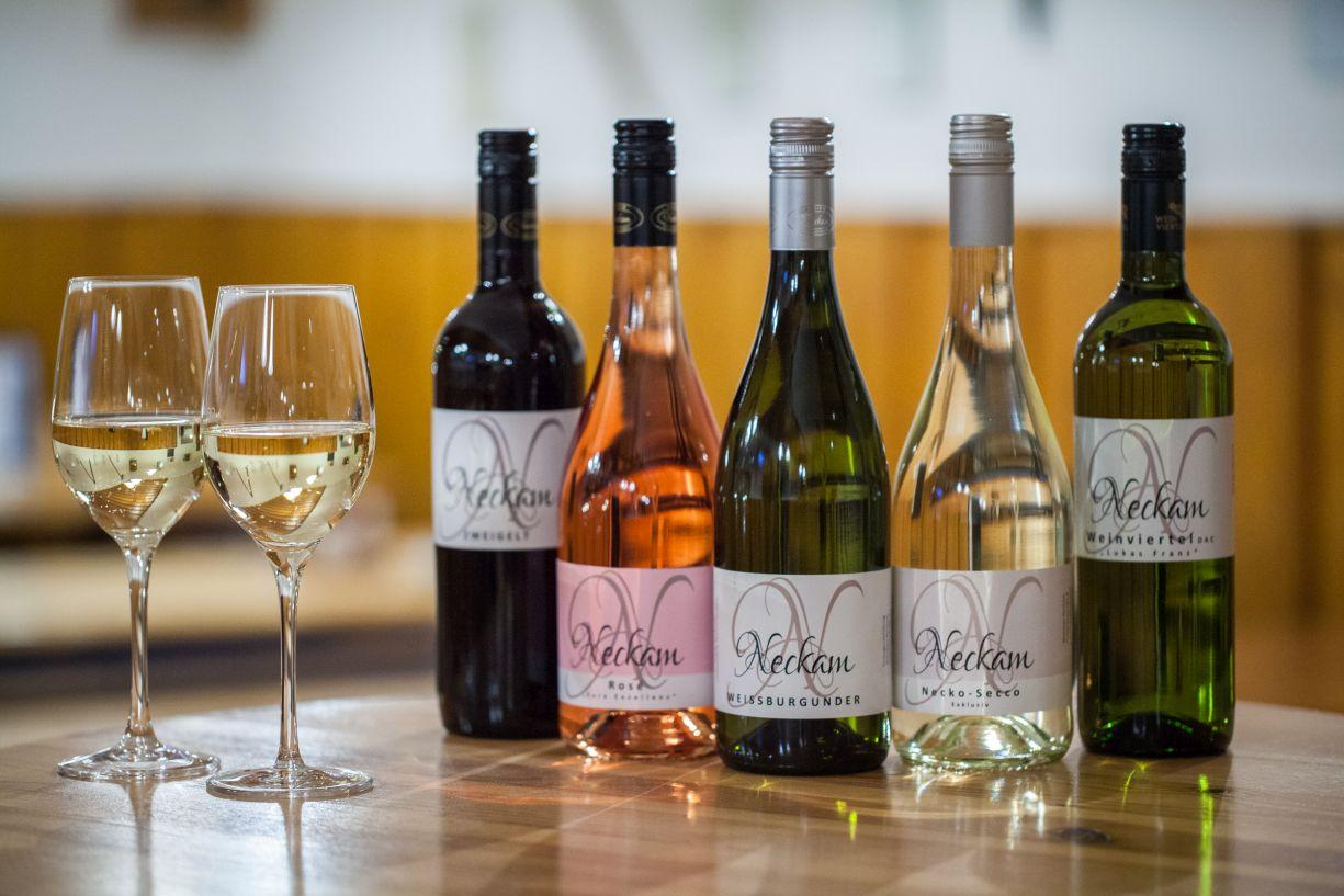 Weinbaubetrieb Neckam